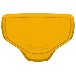 catch_TL_yellow.jpg