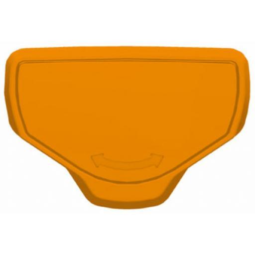 catch_TL_orange.jpg
